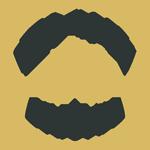 True North Staging Logo